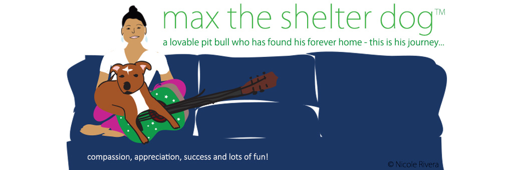 Max the Shelter Dog